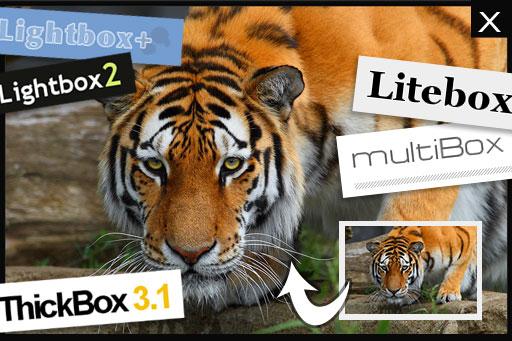 Compare Lightbox, Shadowbox, Slimbox and many more JavaScript pop up windows