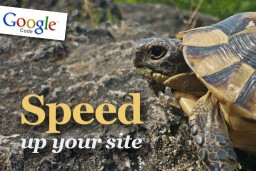 Speed up your site with Google Page Speed