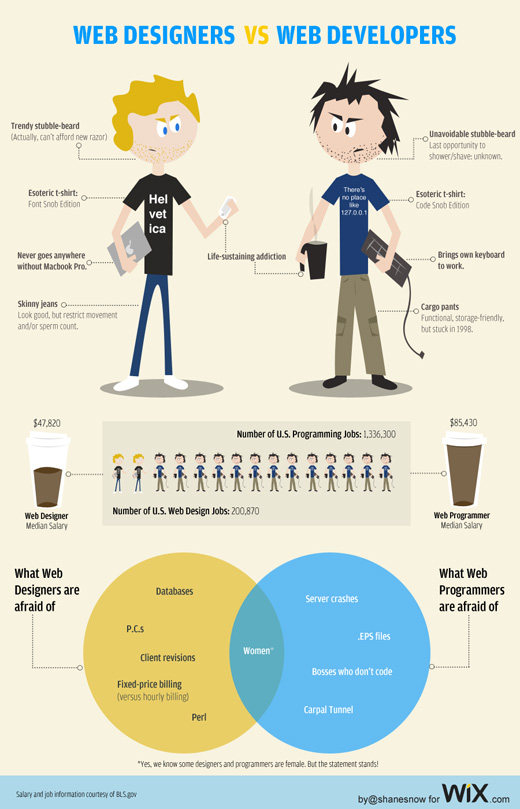 web designers vs web developers infographic